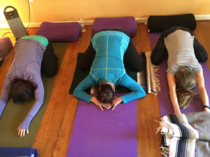 Brain Longevity: Yoga Designed for the Brain Weekend Retreat at Yogaville @ Yogaville
